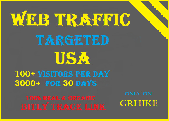 Drive per Day 100+ USA Visitors to your website for 30 Days