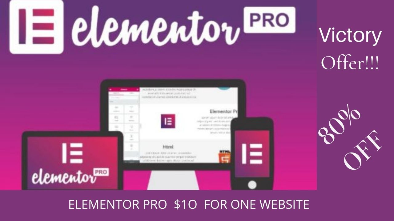 I will Setup elementor pro on your website with realtime update and elementor support