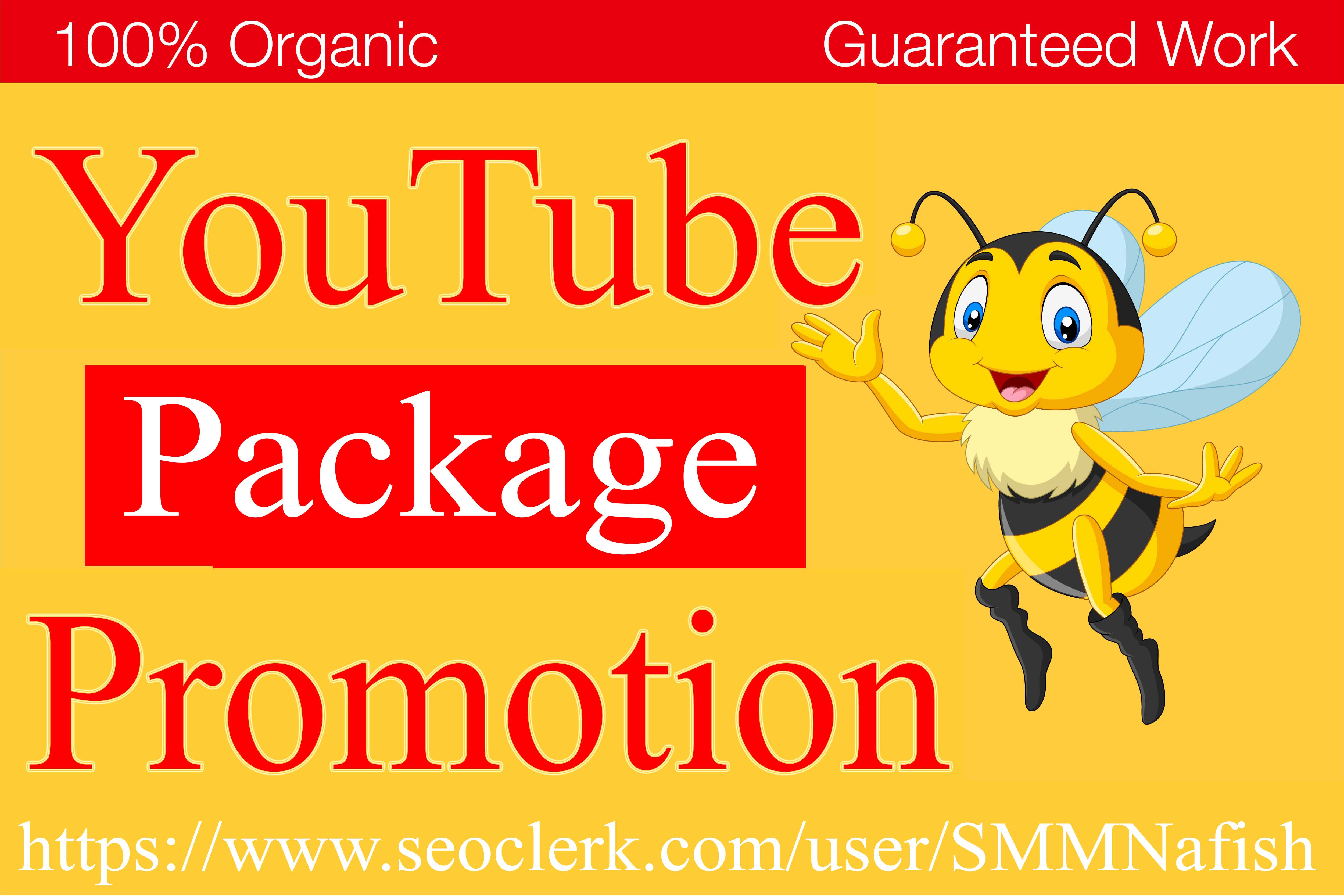 YouTube Package All In one Service Real Video Promotion