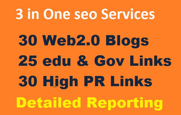 Provide 3 in One seo services 30 Web2.0 Blogs,  25 edu & Gov backlinks,  30 High PR Backlinks