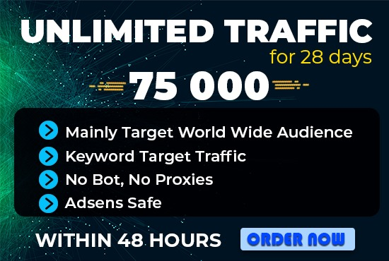 send 75000 real human keyword target website traffic or visitors to your blogs