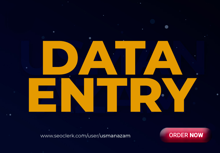 I will do instant data entry work