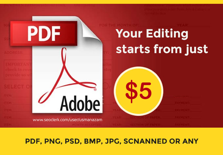 I will edit PDF or any document in 1 hour