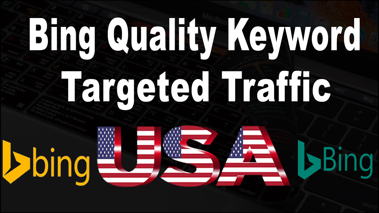 USA targeted organic traffic from Bing for 20 days