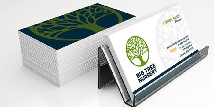 Professional 2-Sided Business Cards