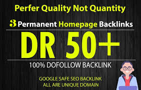 Build 10 High DR 50 HomePage PBN Backlinks
