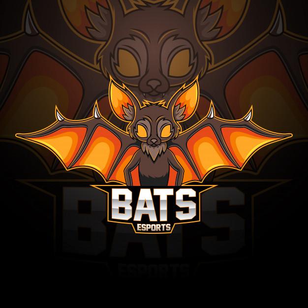 I will create a custom professional mascot logo design