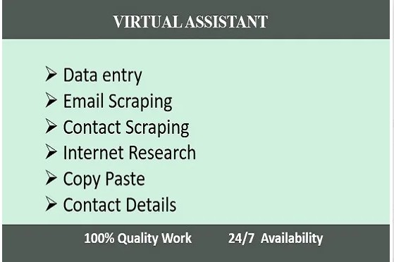 i will do any kind of data entry work, internet search