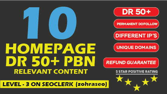 Build 10 Powerful Homepage Permanent Dofollow PBN's with DR 50 Plus