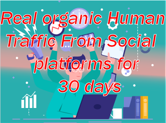 Real organic Traffic daily 500+ for 30 days 24/7 non stop