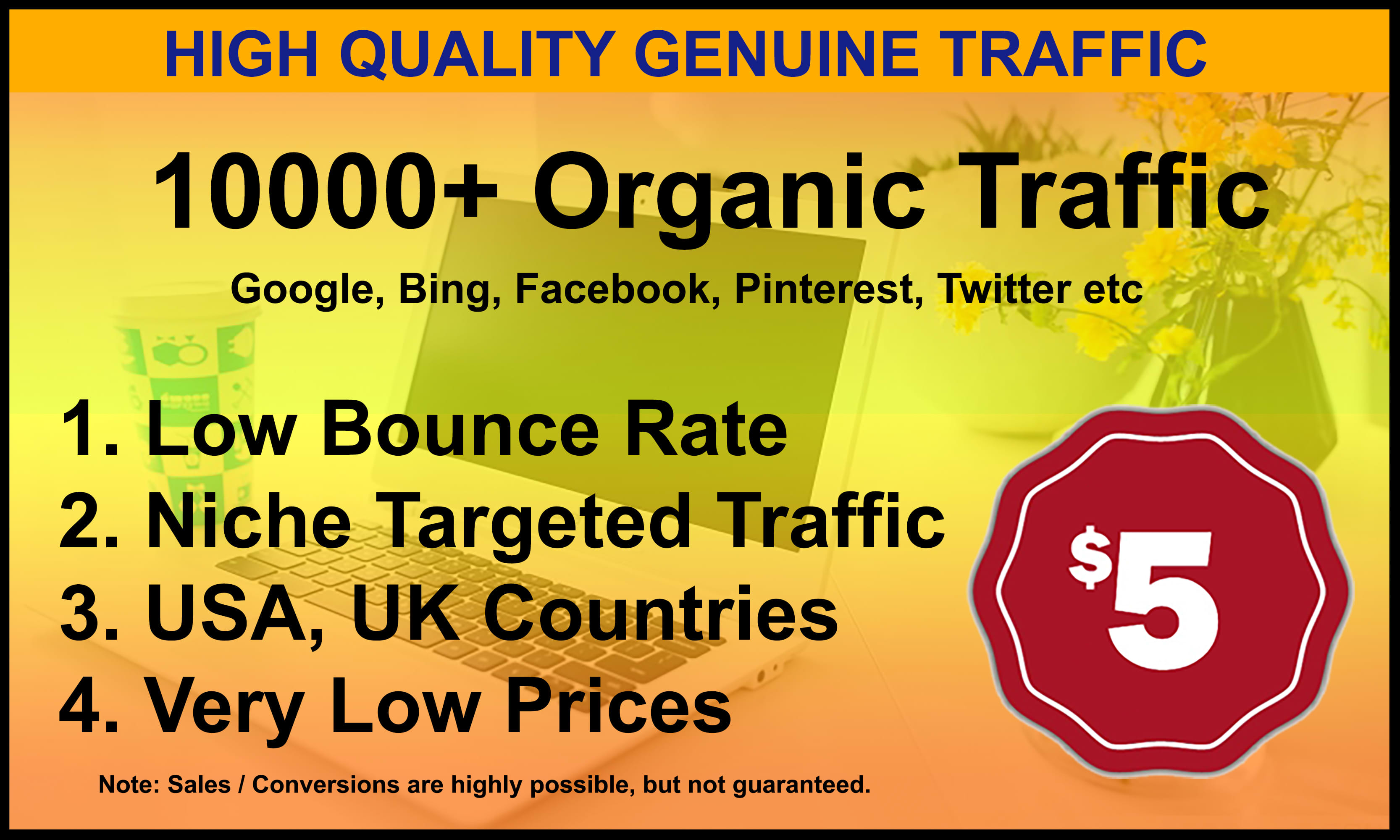 I will drive unlimited genuine web traffic for 30 days