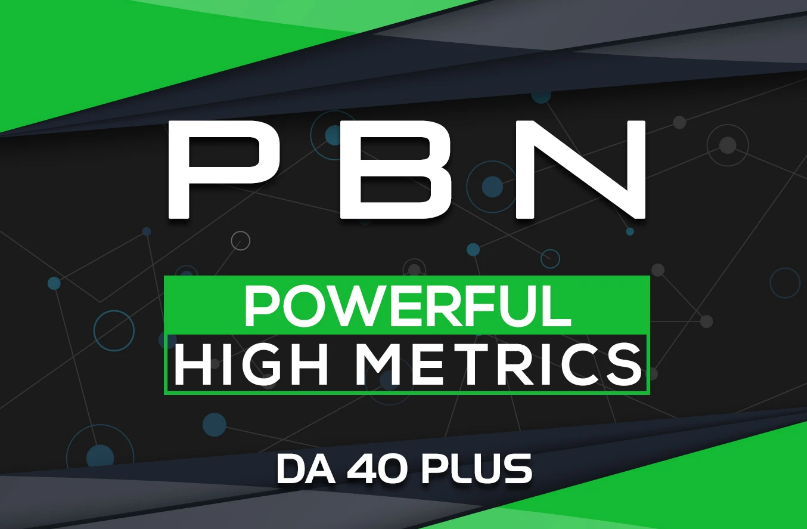 build 10 homepage pbn High Quality Unique backlinks da40 plus