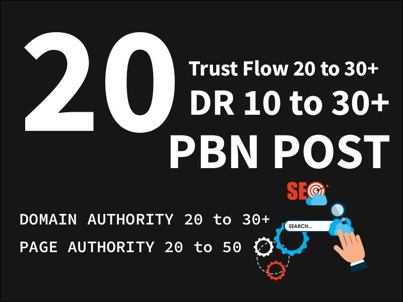 I will provide 20 pbn home page link high da pa