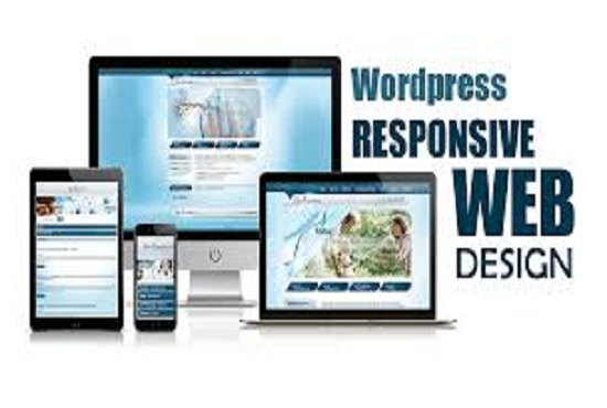 Develop and Build Responsive WordPress Website for your business or blog