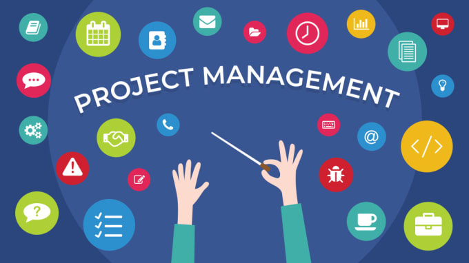 I will do your project management task