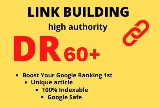 manual build DR 60 permanent homepage pbn dofollow backlinks