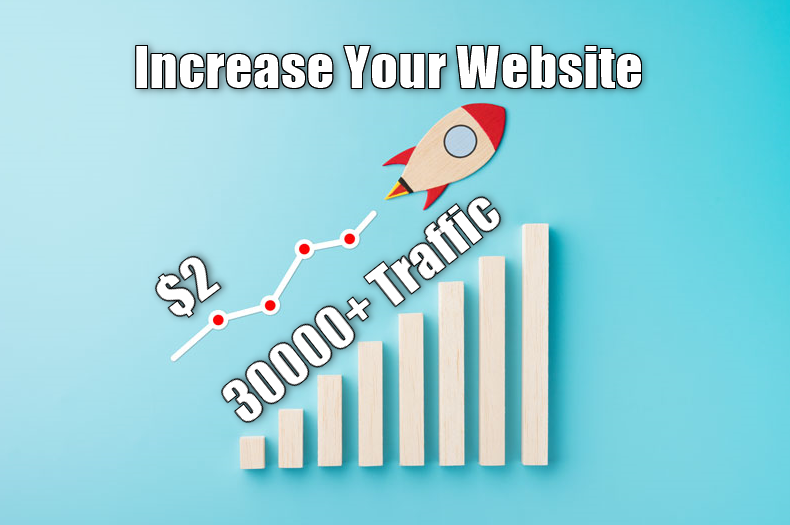 30,000+ keyword targeted Organic traffic from google