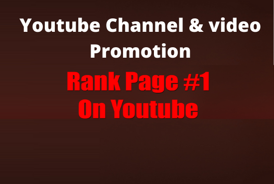 I will provide full youtube promotion