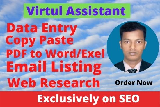 I will do data entry and data management