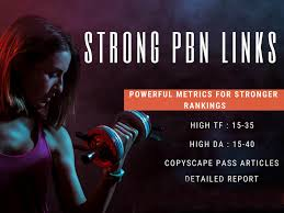 Add Create 100 powerful seo permanent pbn backlinks high da tf homepage