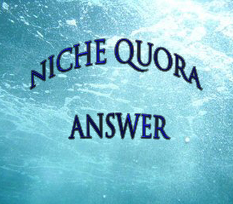 Provide Niche Relevant 25+ Quora answer targeted traffic.