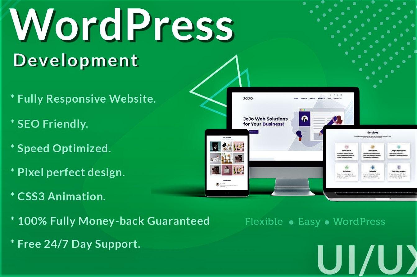 I will create professional and responsive wordPress website