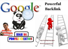 I will do high 100 profile authority backlink manual SEO service