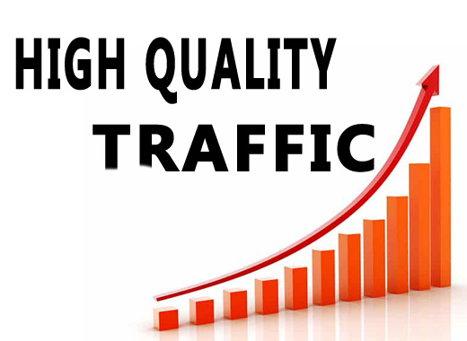 Unlimited And Real Website Traffic For 4 Months
