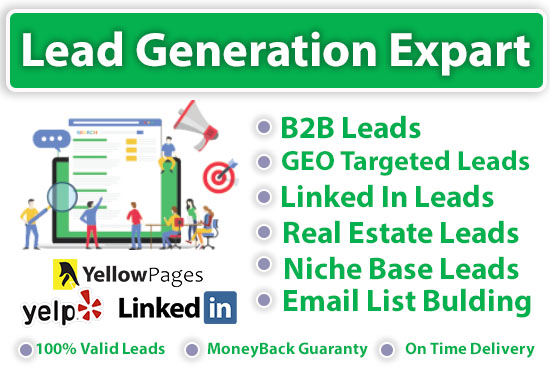 I will collect b2b lead generation and GEO targeted lead generation