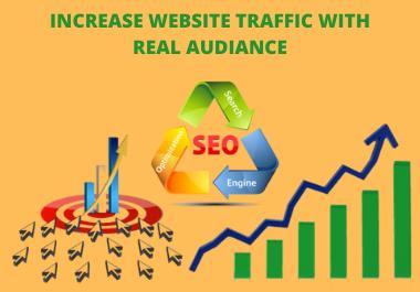 I will provide 400+ organic website traffic