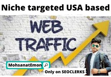 Niche targeted USA based web traffic.