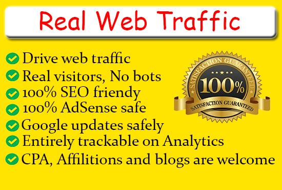 I will drive organic web traffic