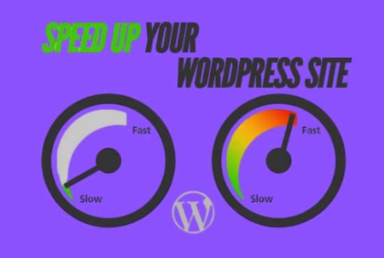 I will increase wordpress speed optimization with google pagespeed and gtmetrix