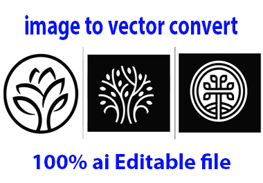 I will vector, redraw, convert your logo,  image or graphic to vector files