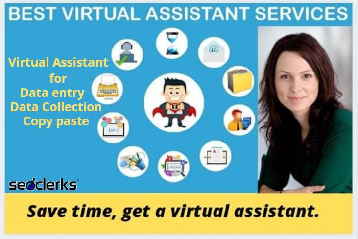 I will be trusted virtual assistant for data entry,copy paste web research 1 hour