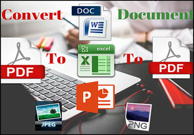 I will convert PDF to word,  PDF to excel,  image/scanned page to word/excel/notepad data entry work