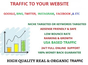 Get 100 traffic to your website form Google,  Bing,  YouTube,  Twitter,  Instagram,  and many more