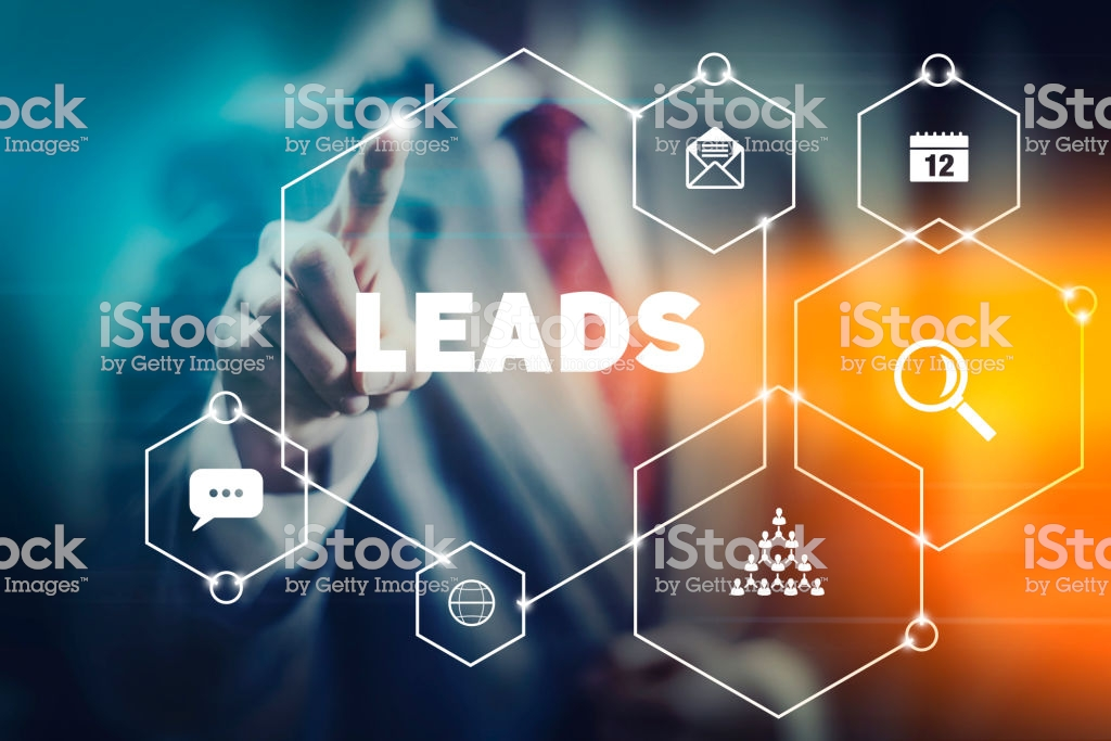 i can generate 200 lead per day in excel format