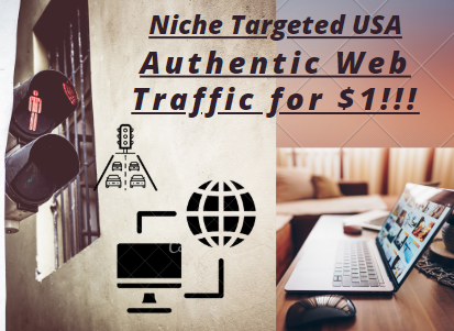 Niche Targeted USA Authentic Web Traffic