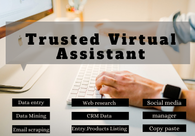 I will be your professional virtual assistant VA