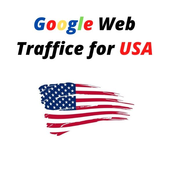 Google Targeted Web Traffice for USA