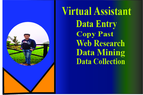 be your virtual assistant for data entry,  typing,  copy paste
