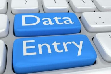 I will be your virtual assistant all your data entry work