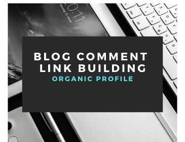 250 keyword relevant blog comment link building