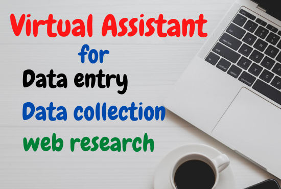 I will be your virtual assistant for perfect data entry and web research