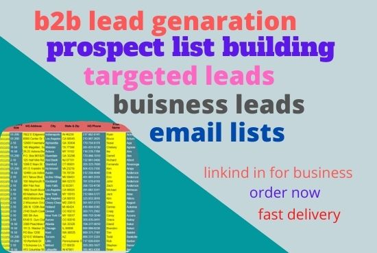 I will be your virtual assistant for b2b lead generation