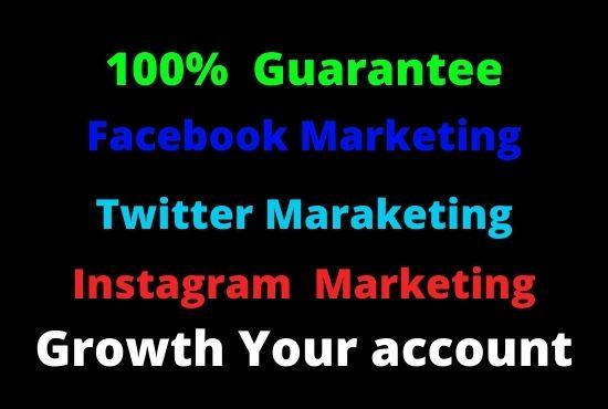 I will do facebook marketing Instagram marketing Twitter marketing video marketing