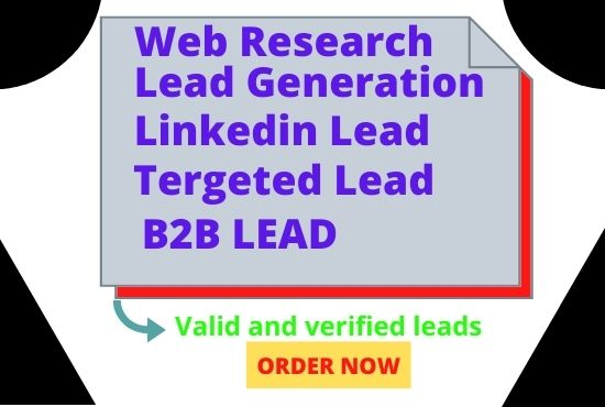 I will do b2b lead generation linkedin lead generation and email marketing campaign