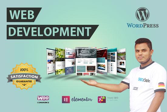I will build creative wordpress website
