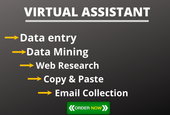 I will be your Virtual Assistant for data entry, copy paste and web research